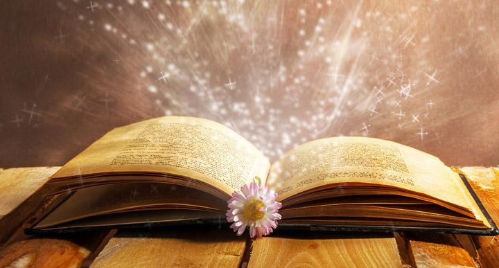 """הרב פינטו – אמרות טהורות – פרשת נח – תשע""""ה"""